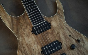 Black Water Guitar Company DII